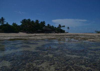 Praia 4_2