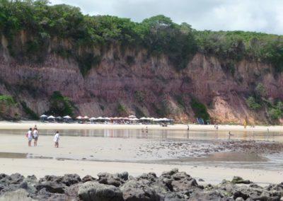 Praia Golfinhos
