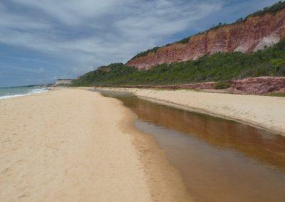 Praia Pitinga2