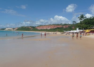 Praia Pitinga4