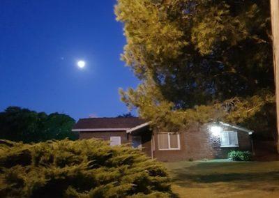 Noche Pina