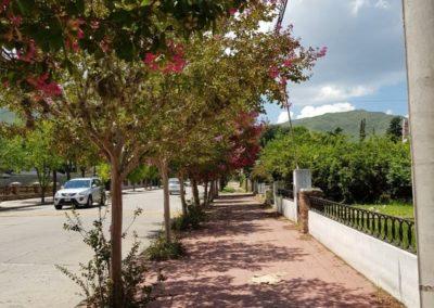 Calles Tiicas2