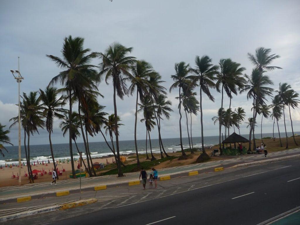 Salvador De Bahía Gontraveler