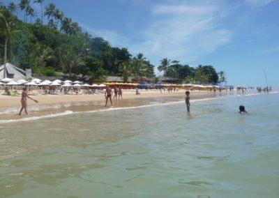 Praia Pitinga6